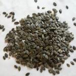 Pestki dyni – wartość odżywcza i wykorzystanie